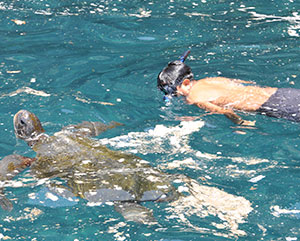 kid snorkeling with sea turtle