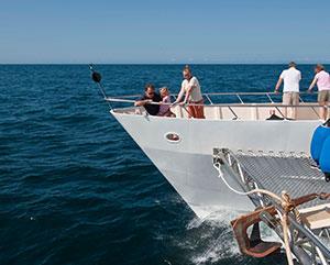 galapagos cruise detail