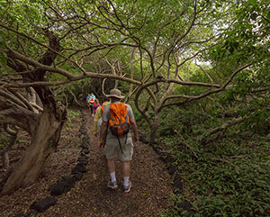 Hiking Tour in Galapagos